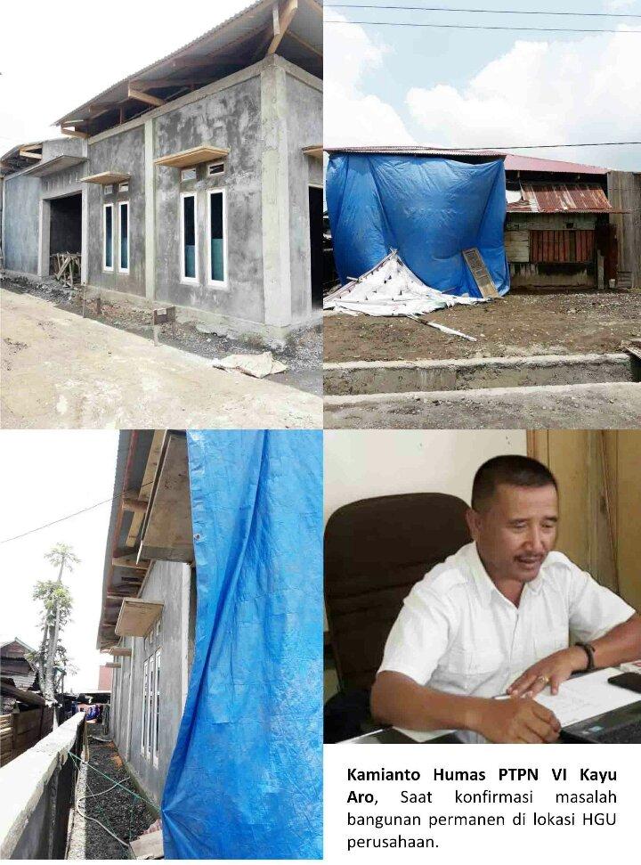 Wow..Tanah HGU Milik PTPN VI Kayu Aro Disalah Gunakan,Pihak Perusahaan Diduga Kurang Tegas